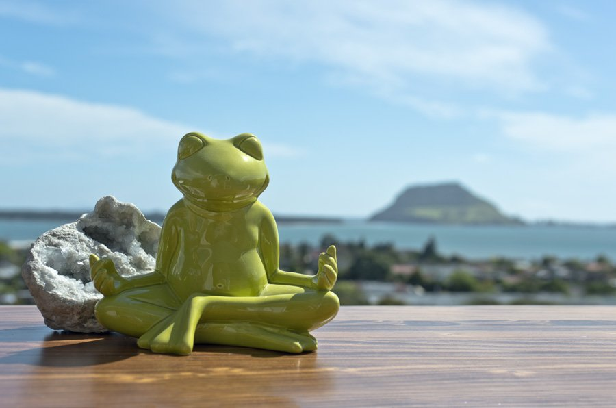 mt-meditationsfrosch